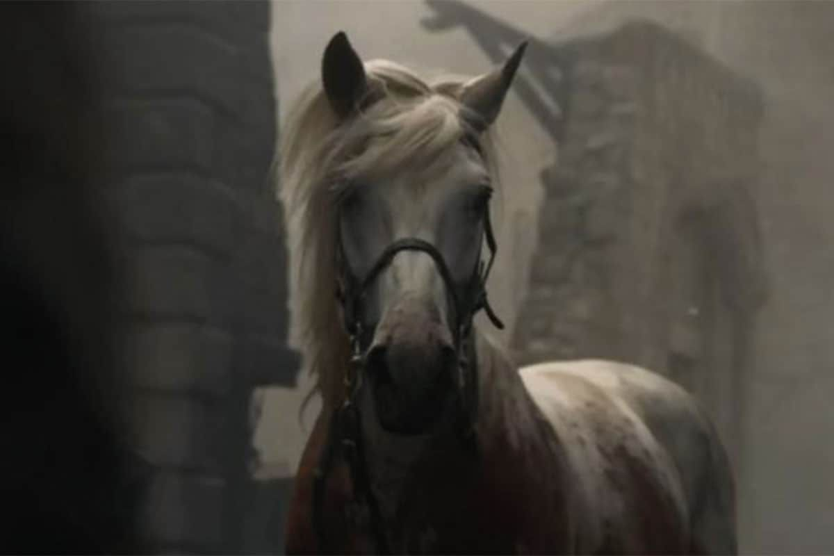 game of thrones white horse hair mane cowgirl magazine
