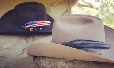 american feathers night ops cowgirl magazine