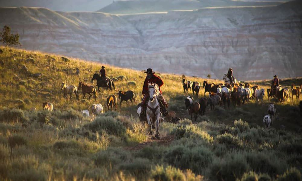 CM Ranch, Dubois, Wyoming , Dude ranch for cowgirls