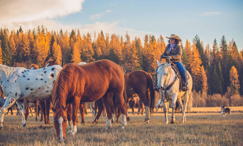 Western Pleasure Guest Ranch Sandpoint, Idaho dream vacation