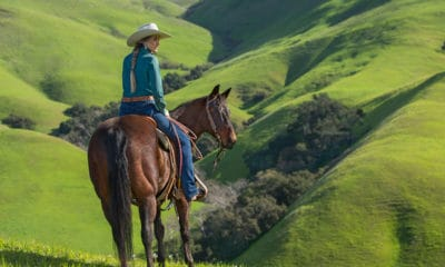 wrangler willow ultimate riding jean cowgirl magazine