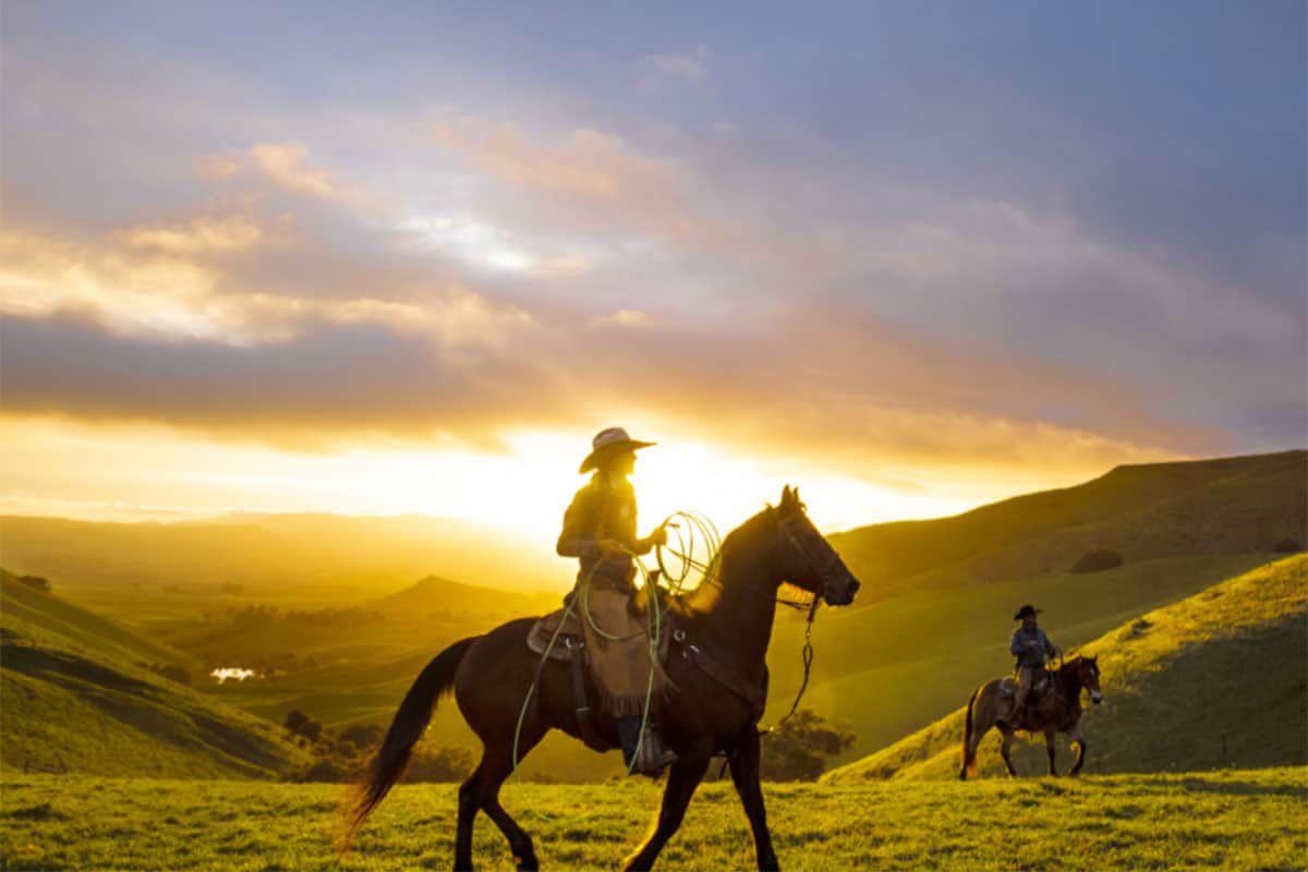 wrangler western wear cowgirl magazine