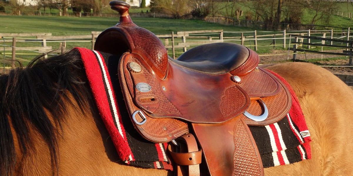 tips for beginner rider