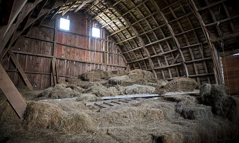 hay in barn cowgirl magazine