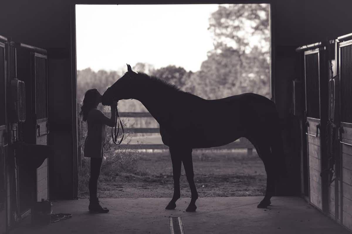 horsey hacks cowgirl magazine