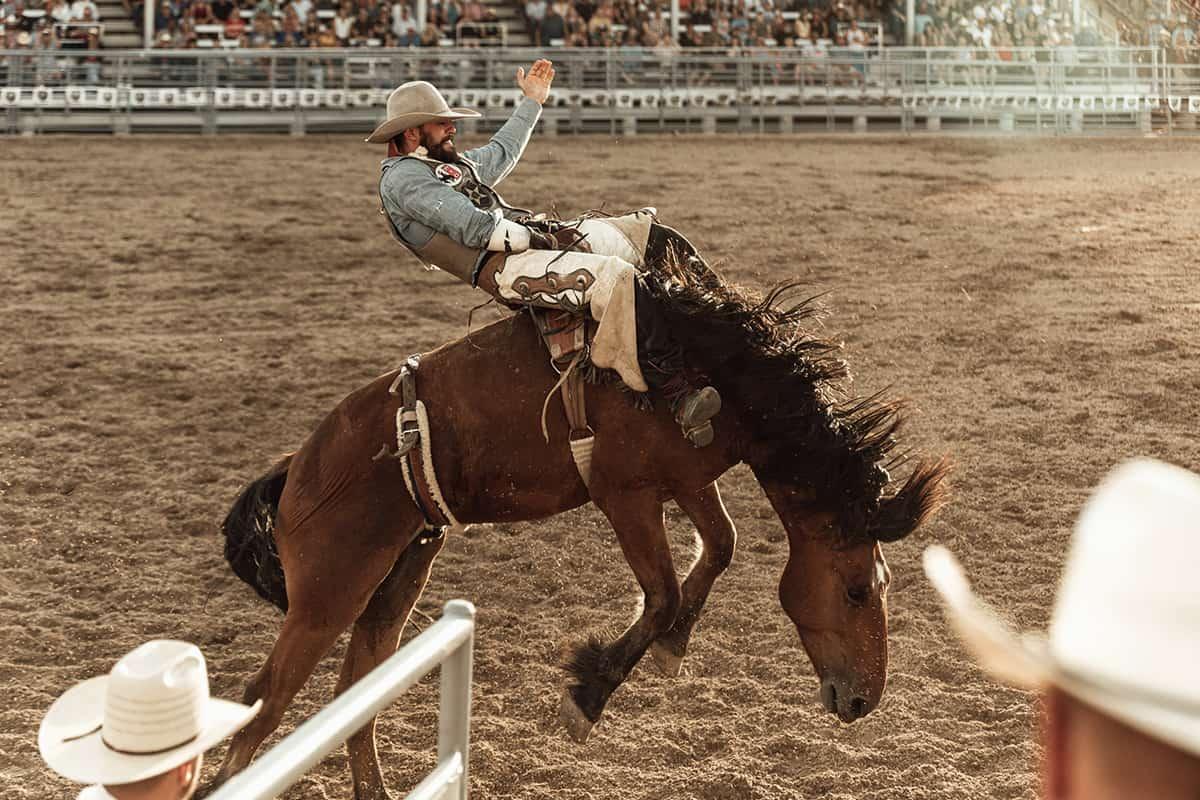 bronc rider cowgirl magazine