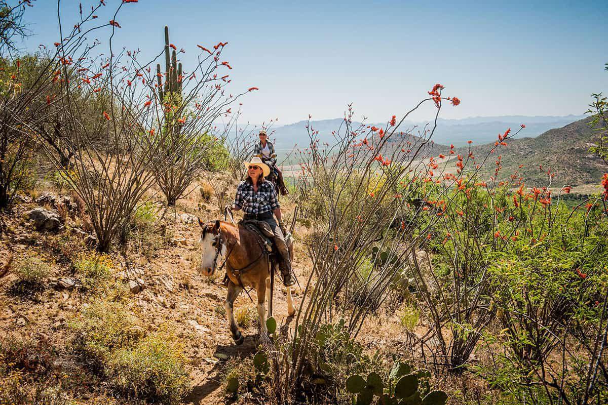 elkhorn ranch dra cowgirl magazine