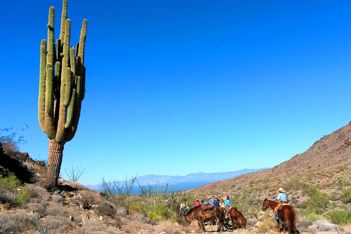 stagecoach trails guest ranch dude ranch association dra cowgirl magazine
