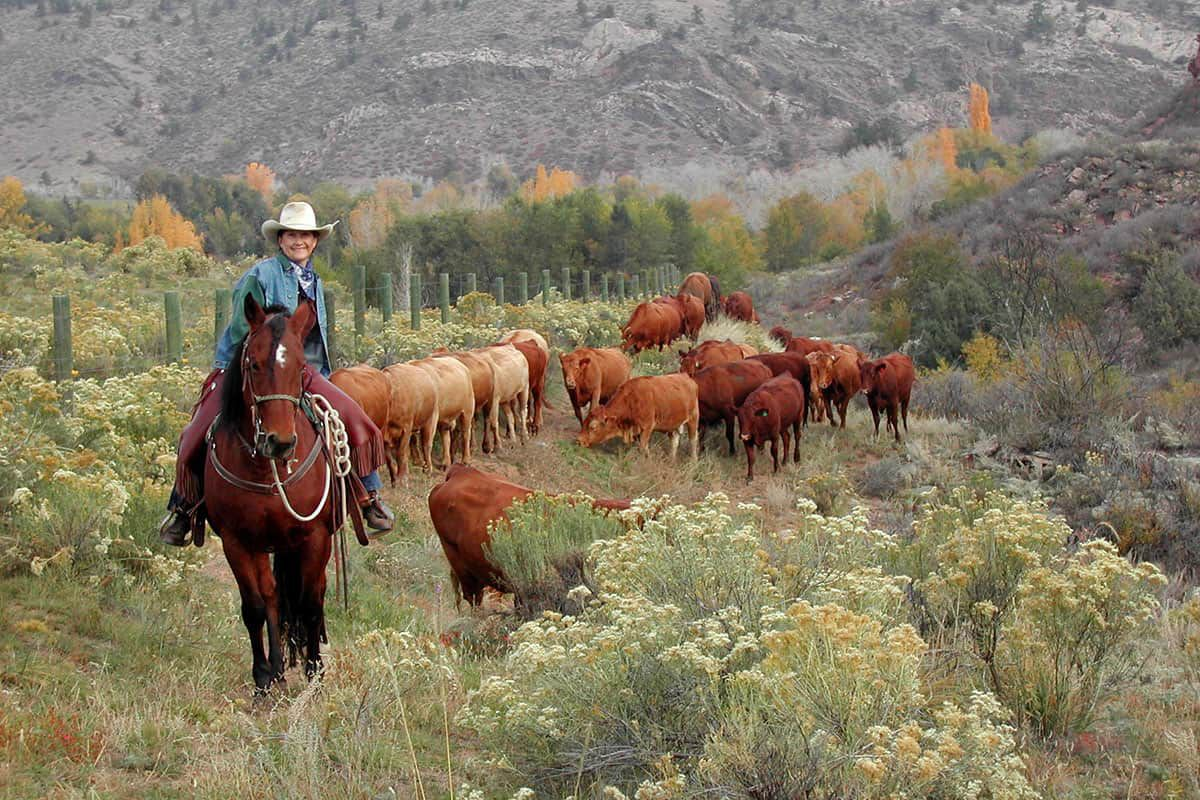 sylvan dale guest ranch cowgirl magazine