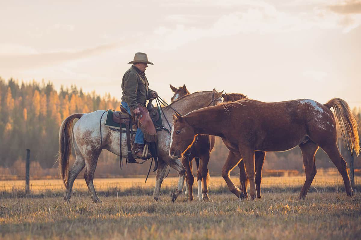 western pleasure guest ranch cowgirl magazine
