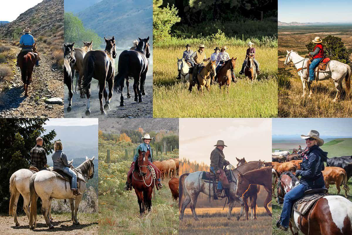 dude ranch association cowgirl magazin