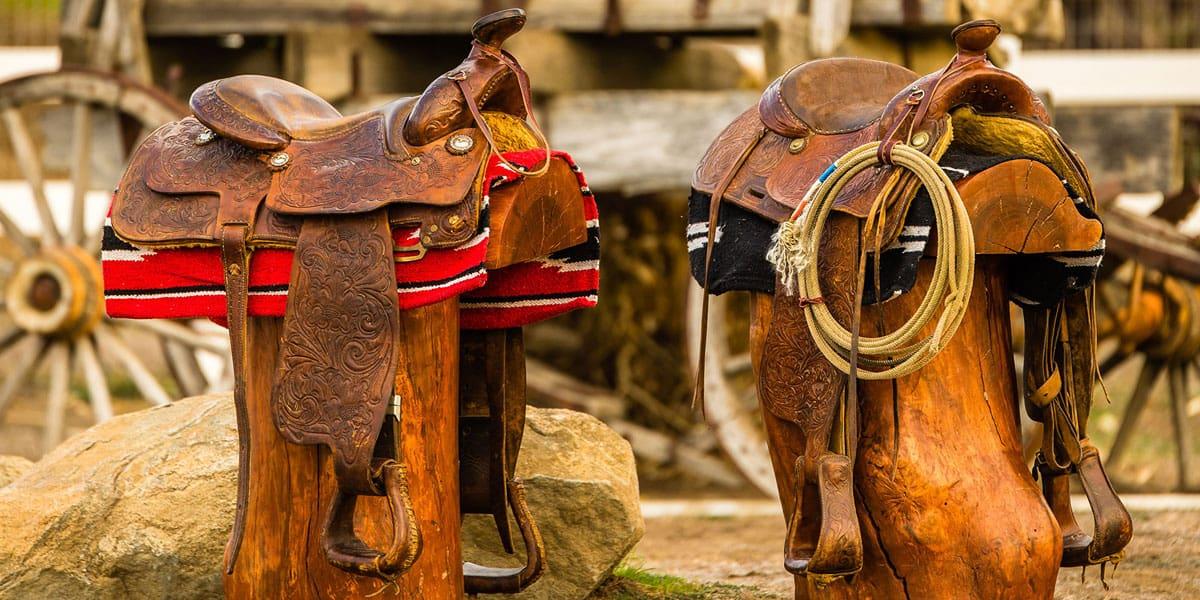 Saddle Care