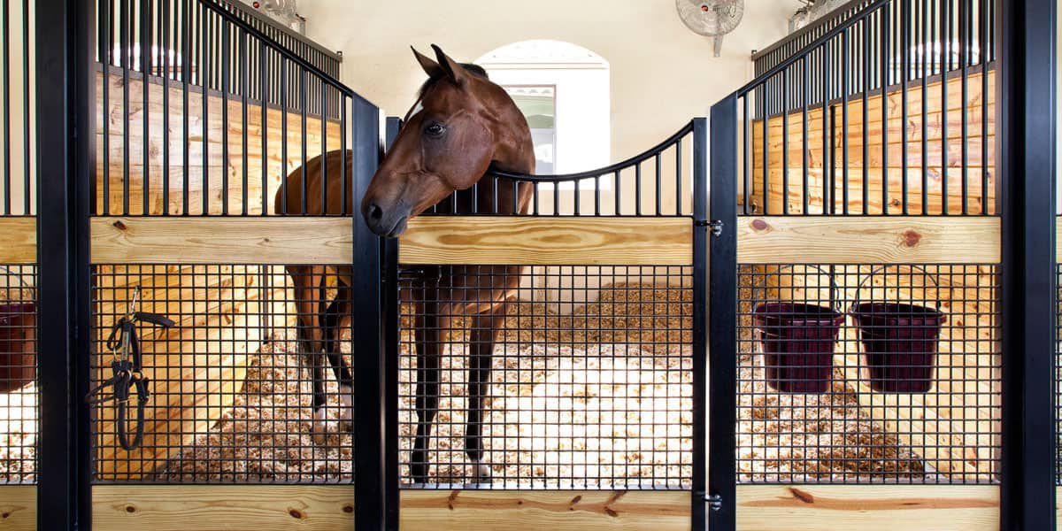 Stall Bedding