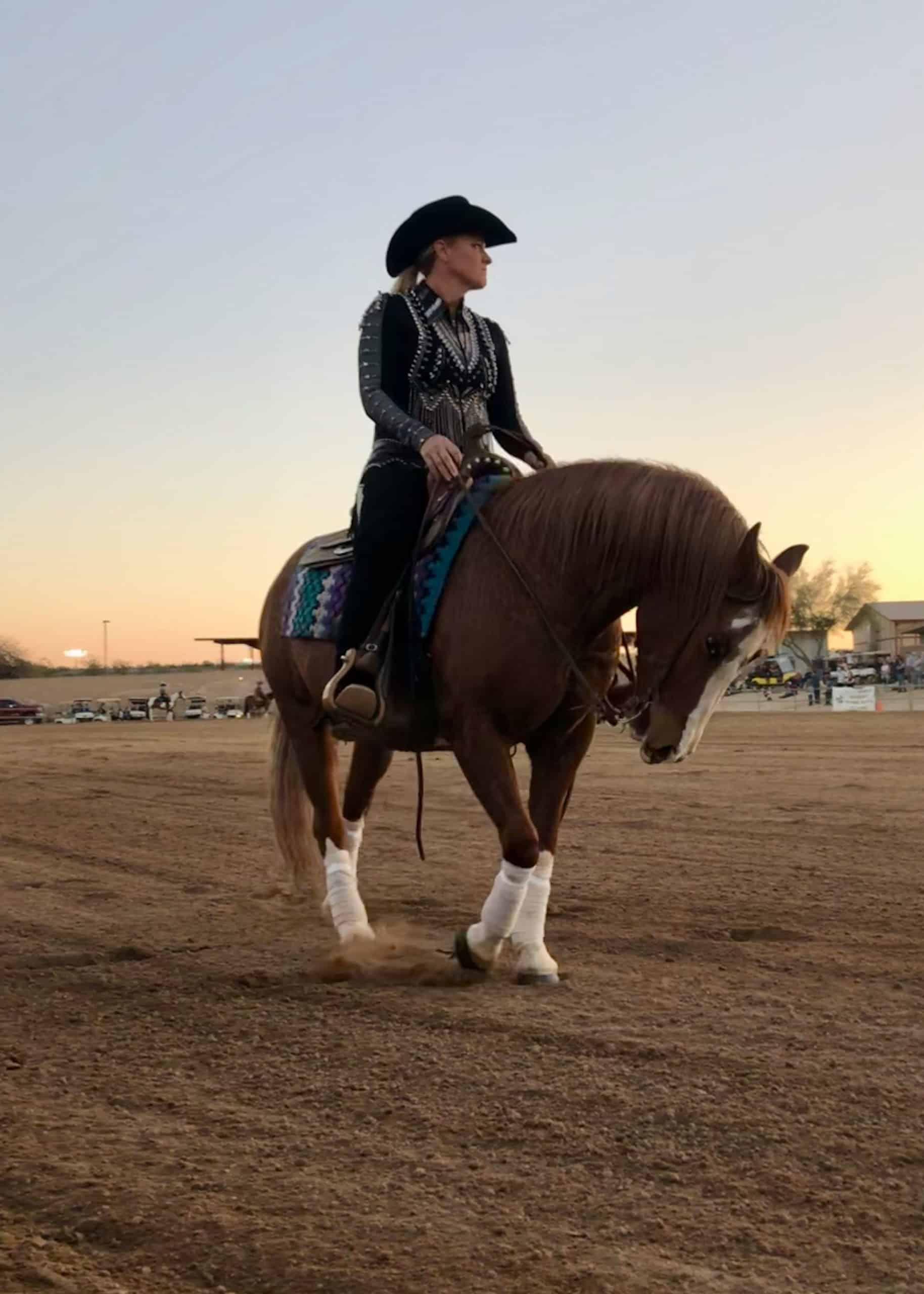 Reining Horse Arabian Cowgirl Magazine