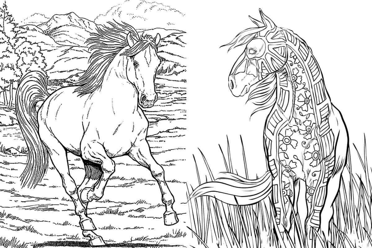 Free Horse Coloring Pages For Adults & Kids - COWGIRL Magazine