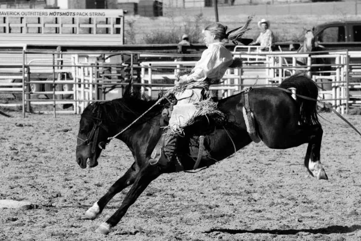dear cowgirl