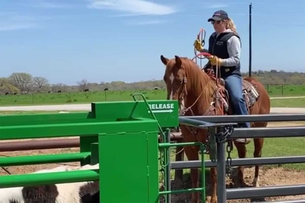 jackie crawford improve their skills at home cowgirl magazine