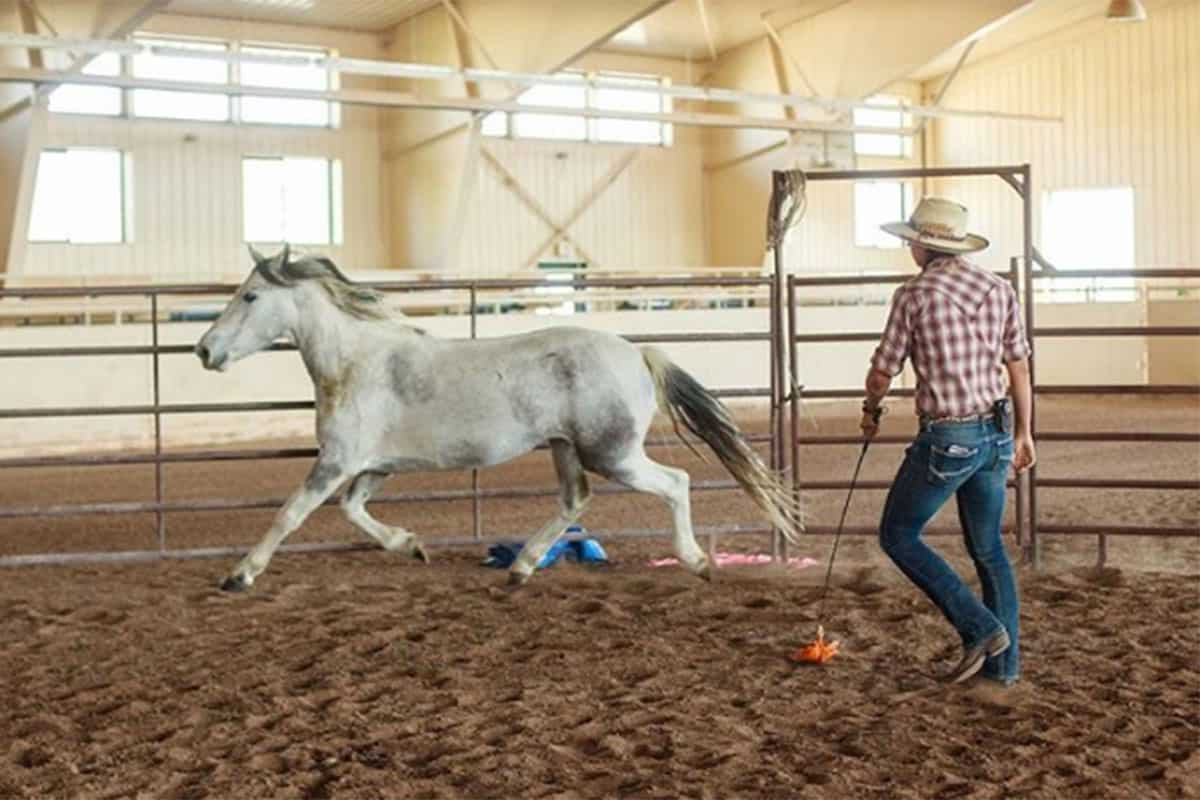 the resort at paws up cowgirl magazine