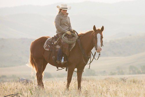 jive horse cowgirl magazine