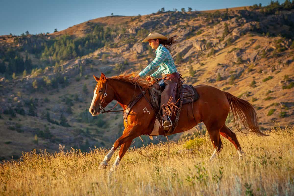 diamond ranch horse sale cowgirl magazine