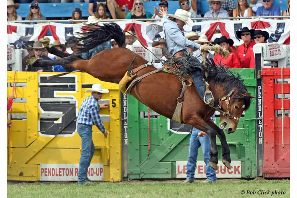 Pendleton Bronc Riding Cowgirl Magazine