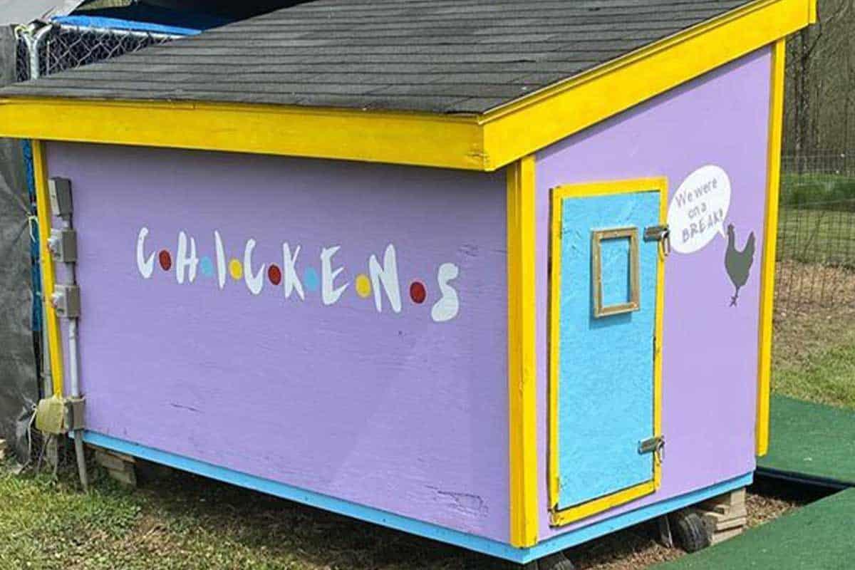 chickens chicken coop friends Jennifer Aniston Rachel green cowgirl magazine central perk