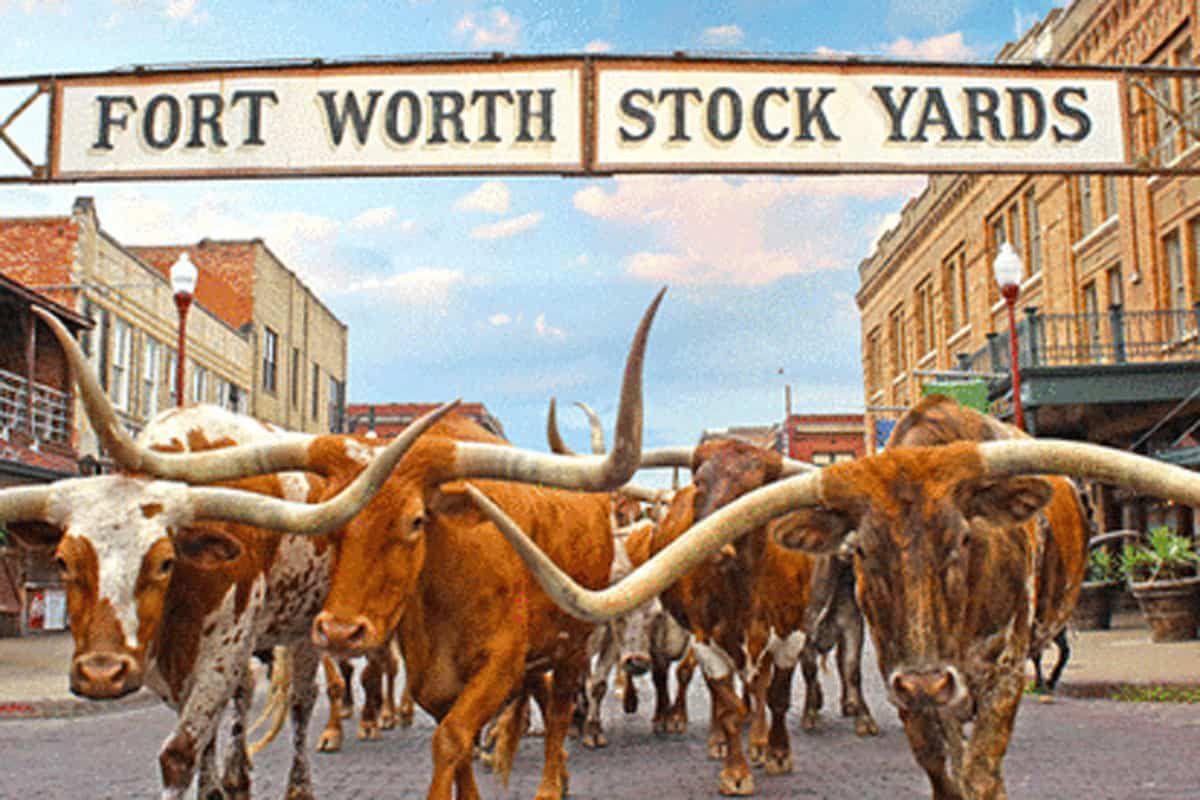 stockyards scavenger hunt cowgirl magazine