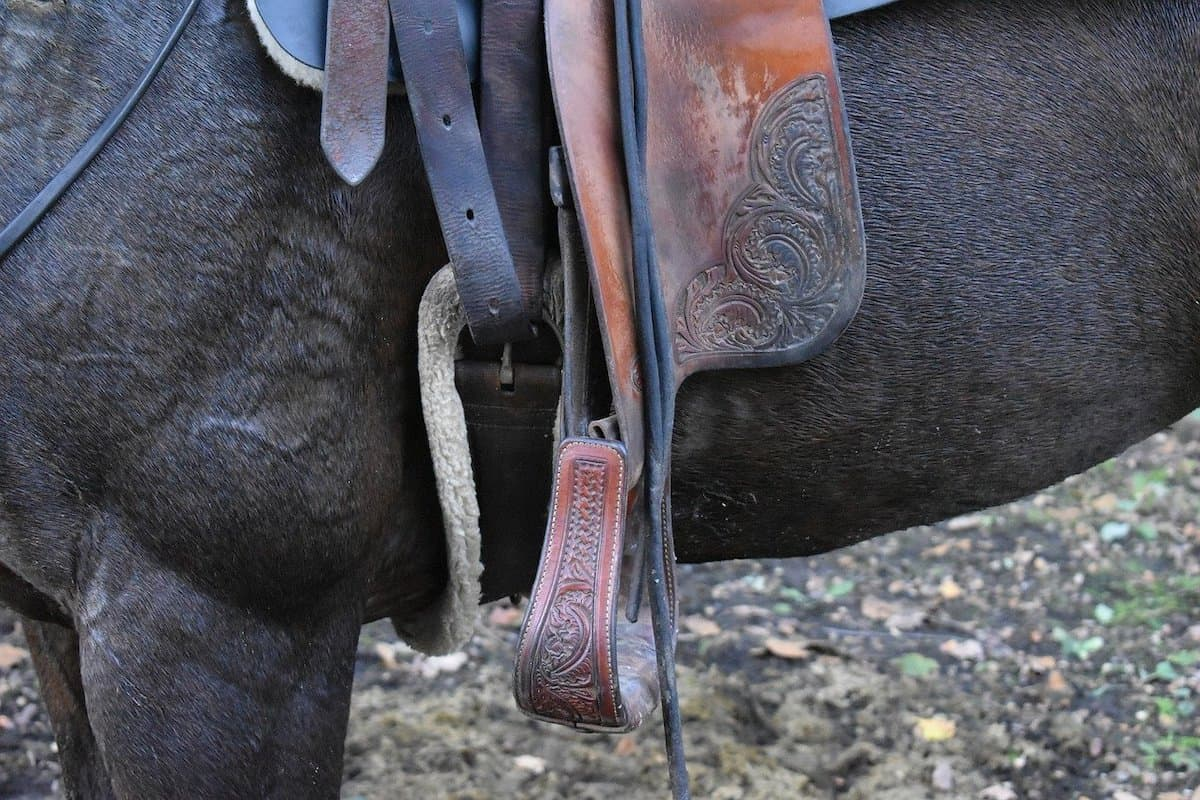 conditioning horse cowgirl magazine