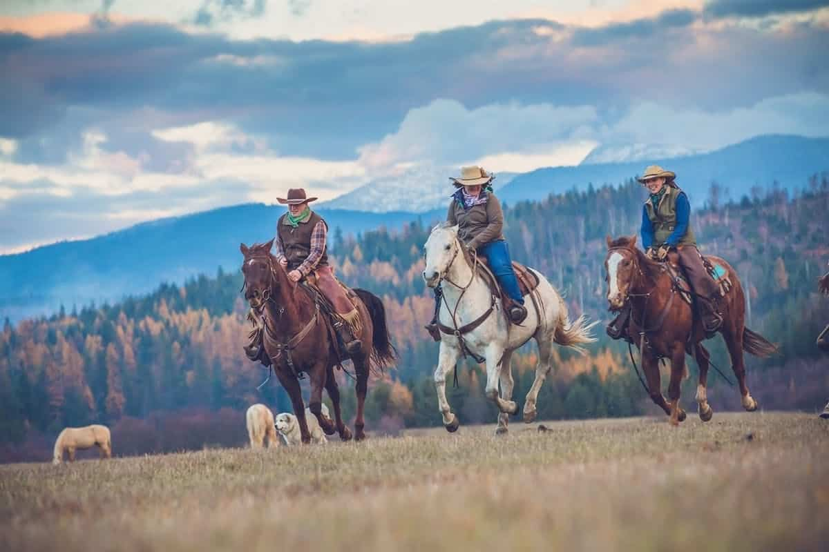 Saddle Up: 5 Dude Ranches Open For Visitors