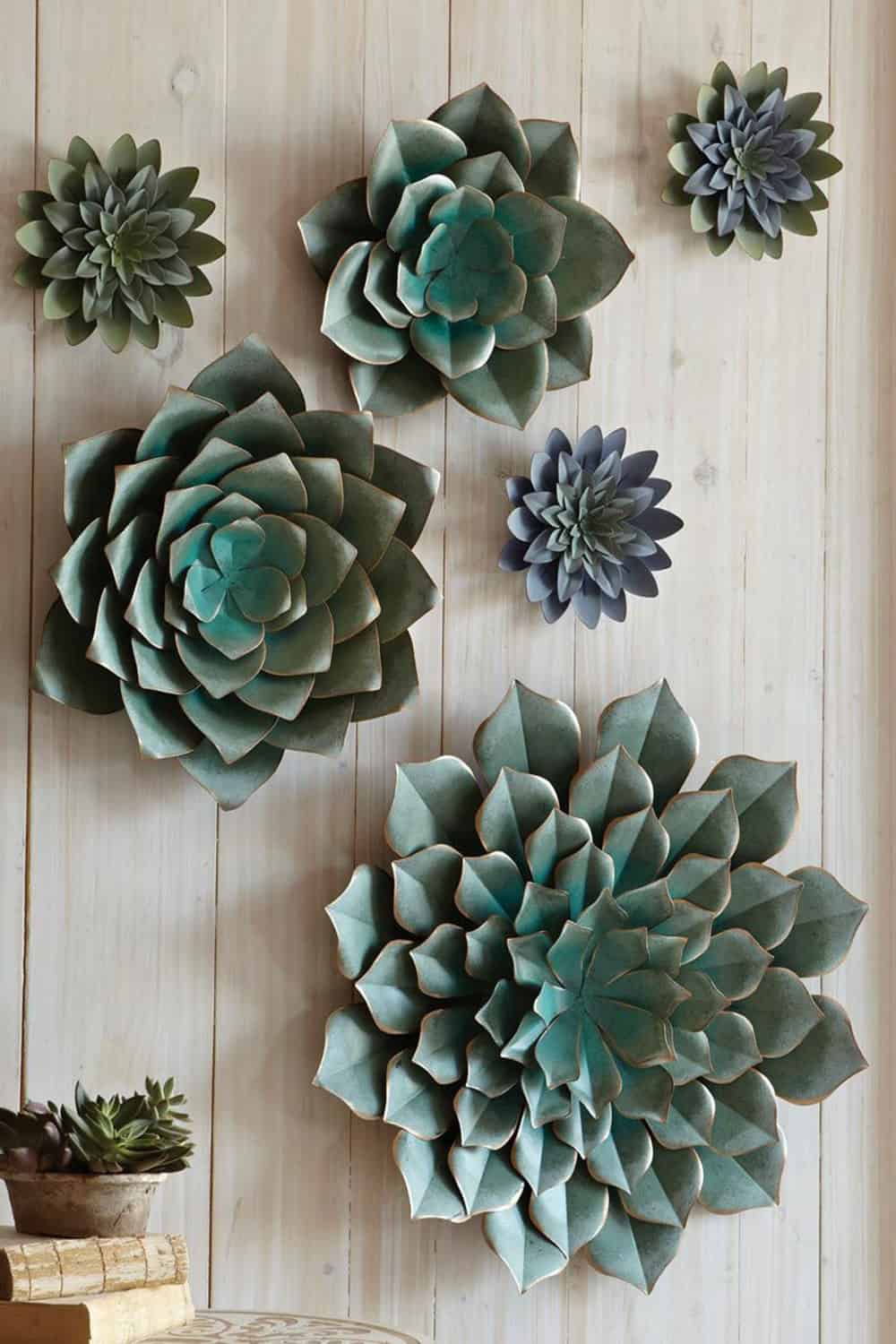 succulents cowgirl magazine