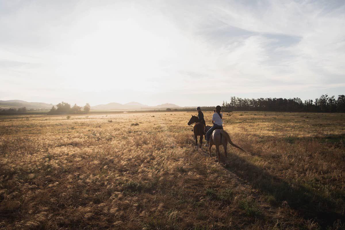 trail hazards cowgirl magazine