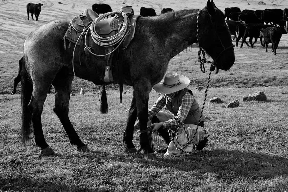one life cowgirl magazine