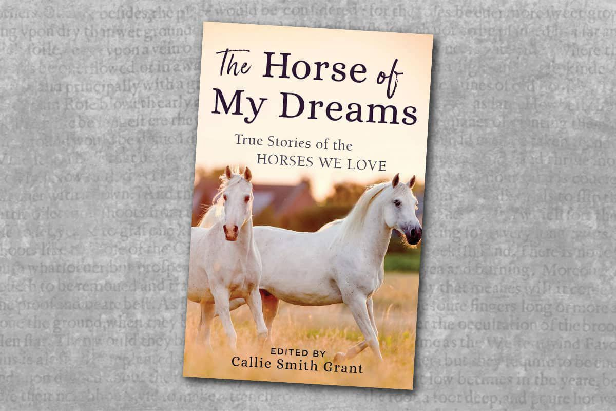 the horse of my dreams cowgirl magazine