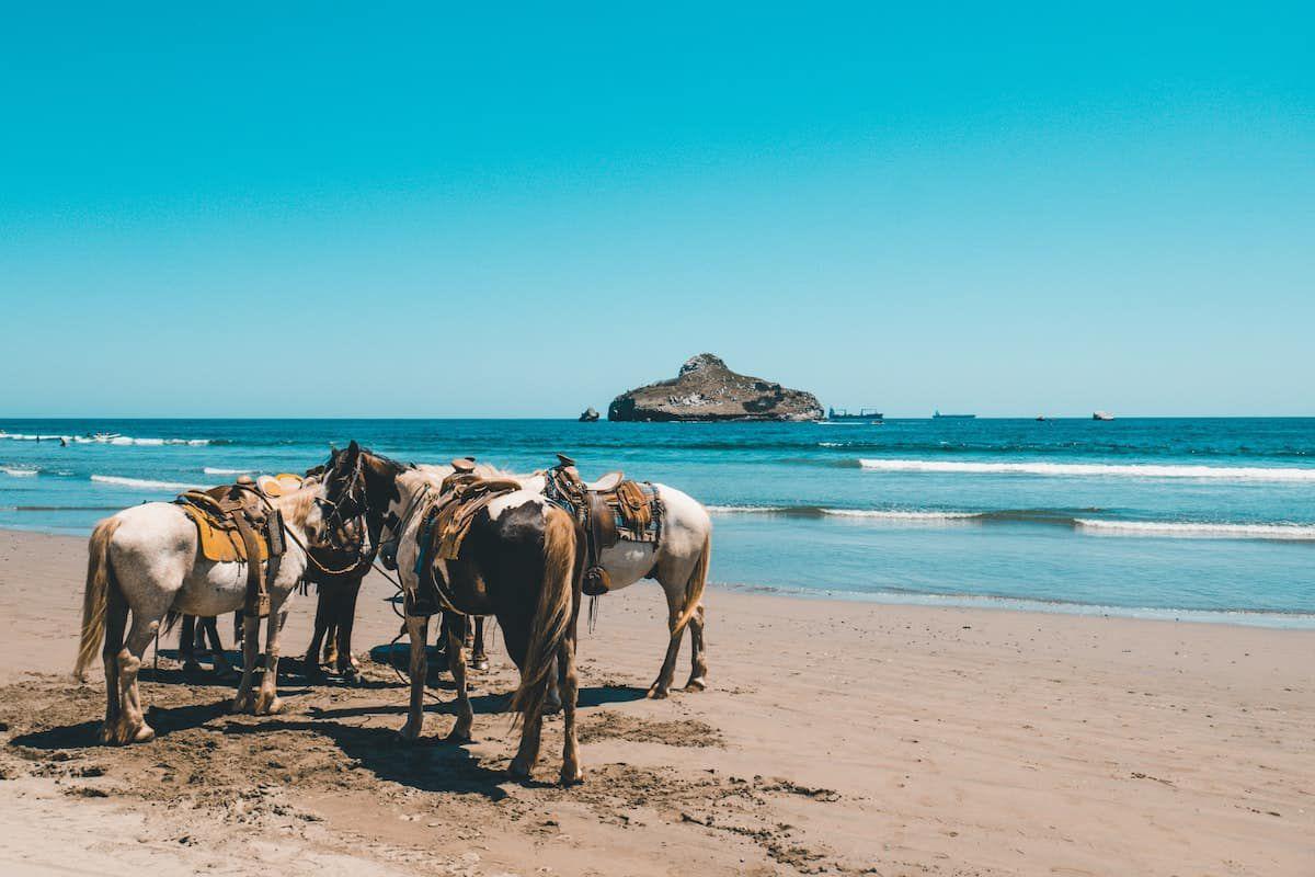 beach ride cowgirl magazine