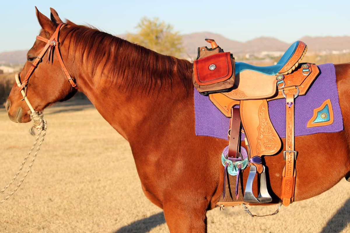 saddle accessories cowgirl magazine