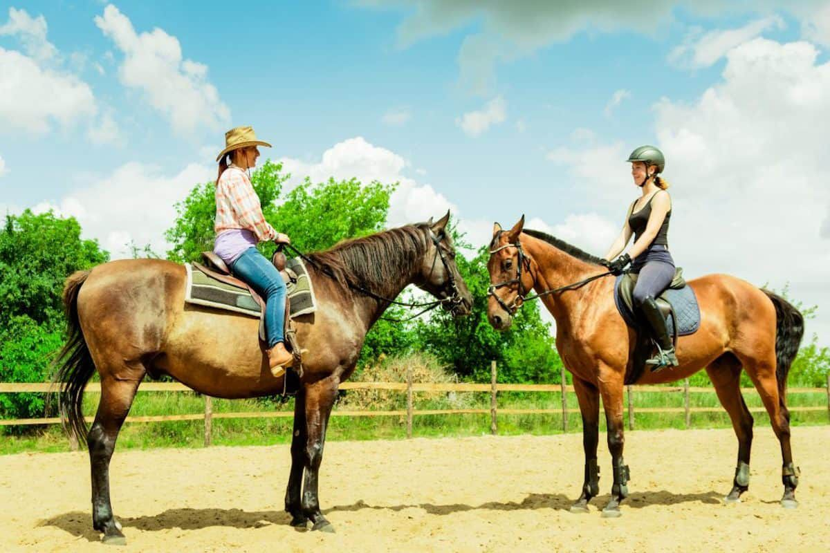 tack up race cowgirl magazine