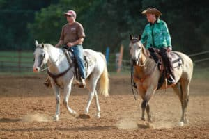 Top 5 Myths About Horseback Riding