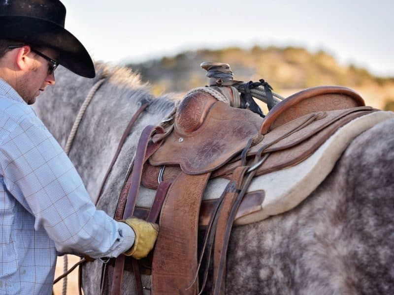 pad cowgirl magazine