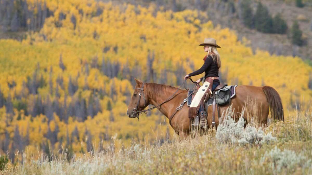 dra ranch