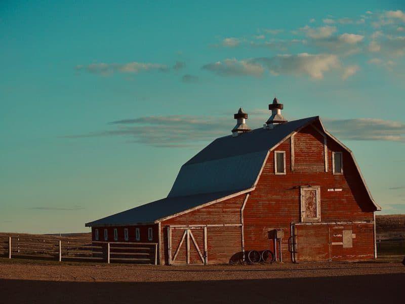 barn cowgirl magazine