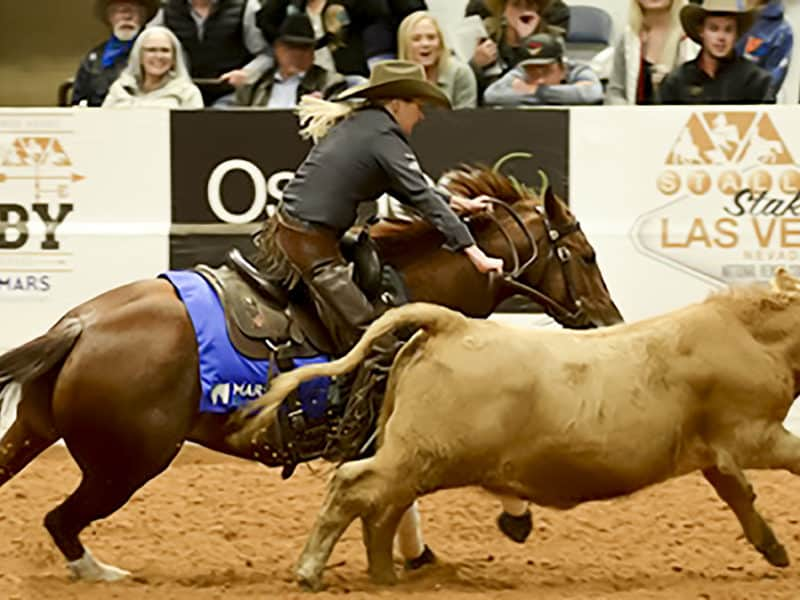 Queen of the Snaffle Bit - Sarah Dawson - Selvarey - NRCHA - Snaffle Bit Futurity - Open Champion - Cowgirl Magazine