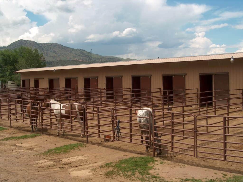 paddocks cowgirl magazine