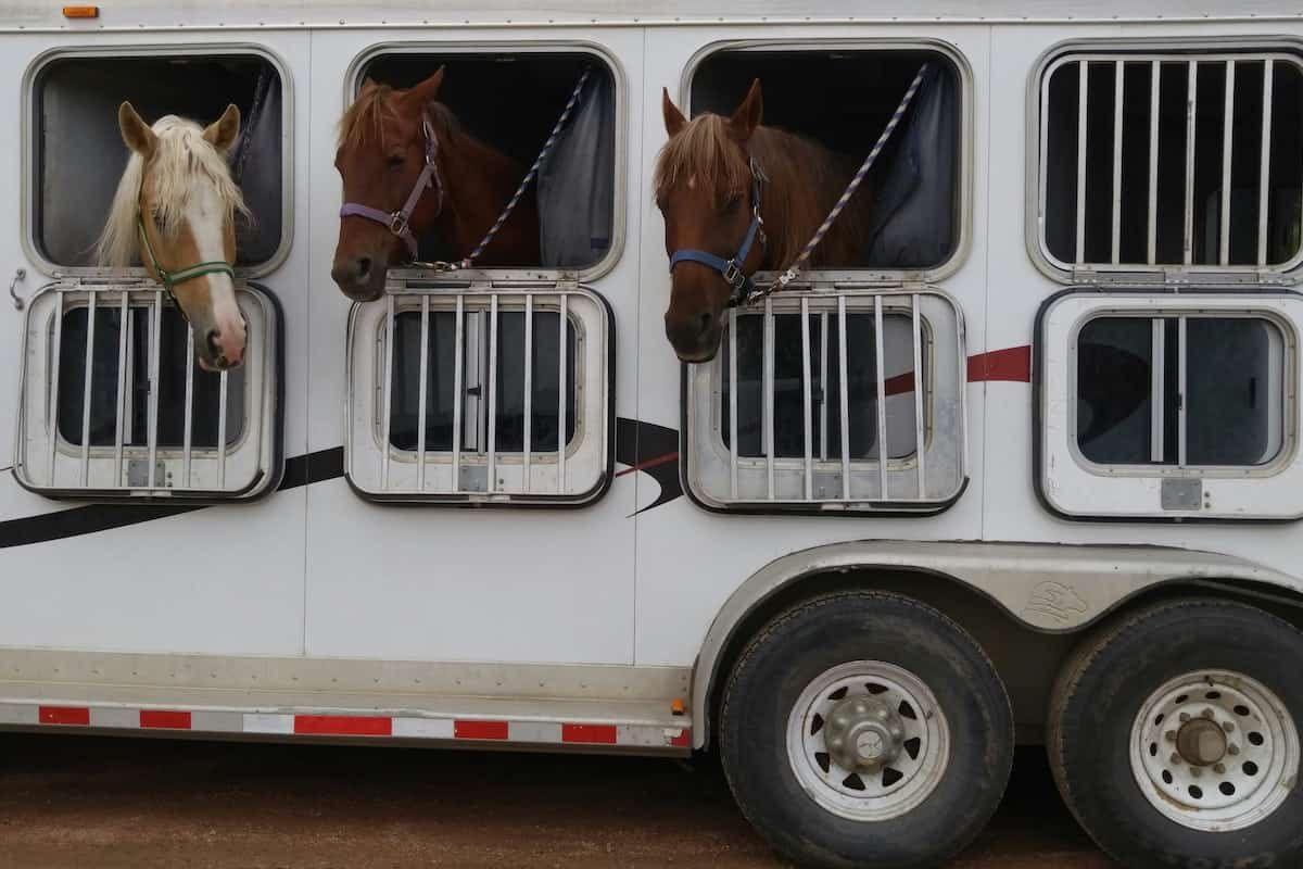 trailering cowgirl magazine