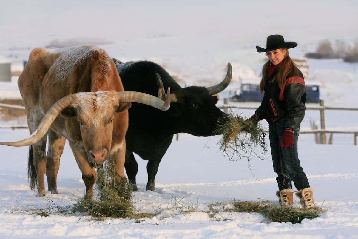 amber ranch cowgirl magazine