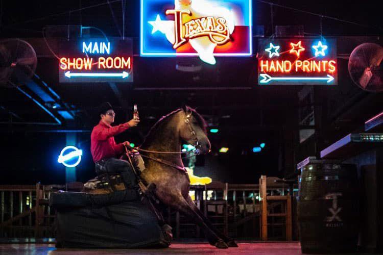 desert diamonds horse sale