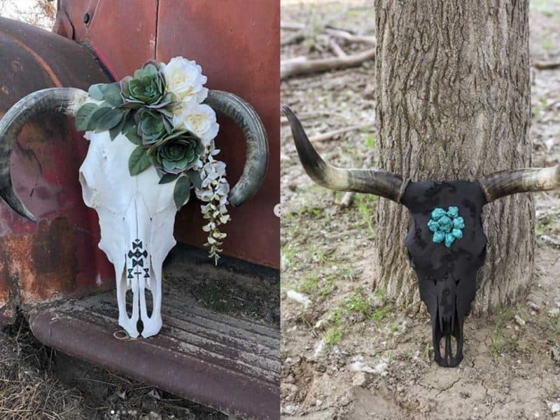 Custom Cow Skulls cowgirl magazine