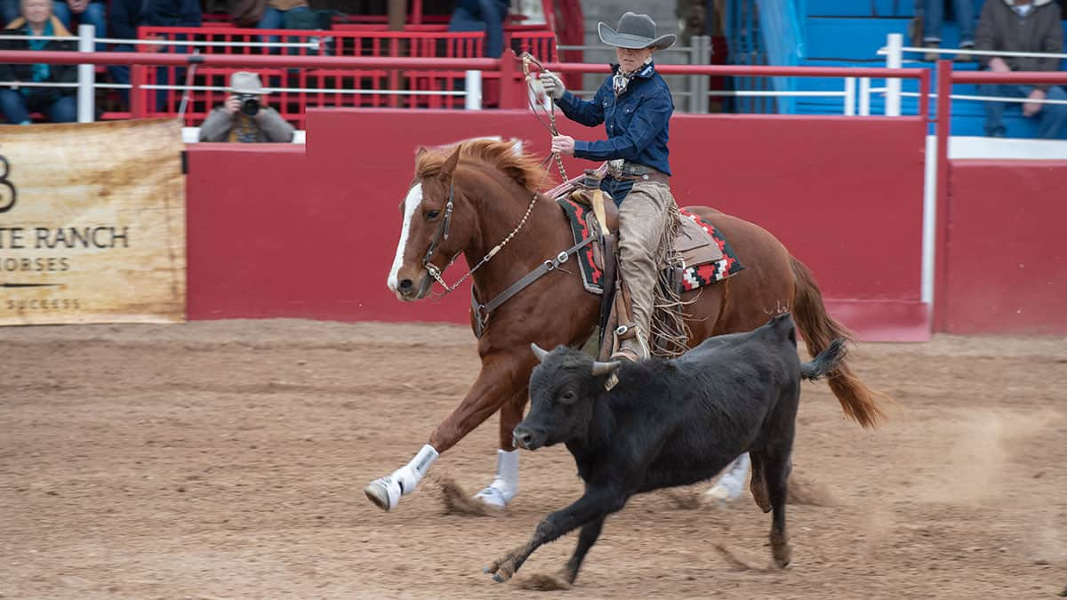 womens ranch rodeo