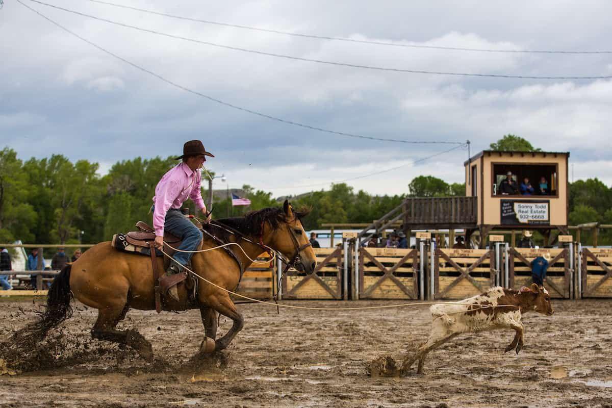 cowboy cowgirl magazine