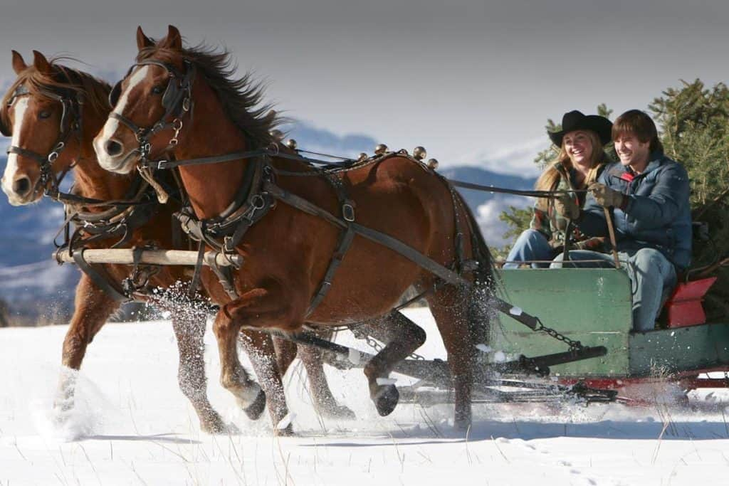heartland christmas cowgirl magazine
