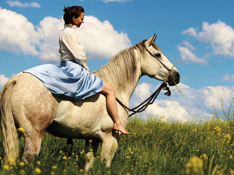 horse of your dreams cowgirl magazine
